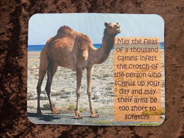 Picture of May the fleas of 1000 camels infest the crotch of the person who screws up your day and may their arms be too short to scratch - MOUSE MAT