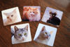 Picture of Personalised Coaster using your image/words - Aluminium Drinks Coaster