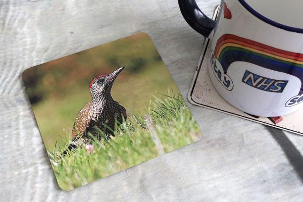 Picture of Green Woodpecker - Aluminium Drinks Coaster