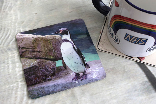 Picture of Penguin - Aluminium Drinks Coaster