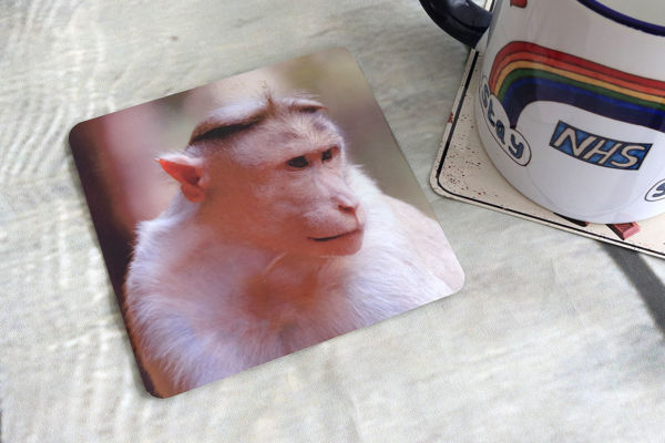Picture of Bonnet Macaque - Aluminium Drinks Coaster