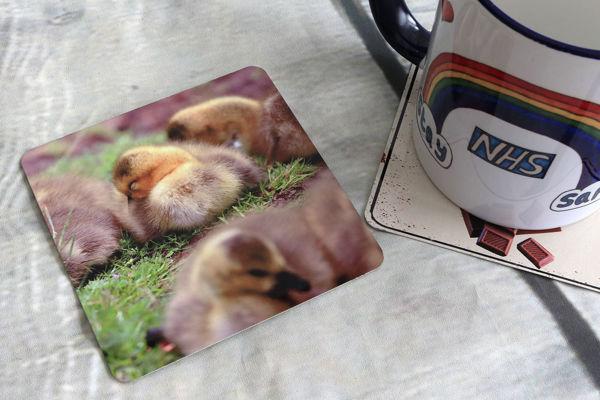 Picture of Goose Chicks - Aluminium Drinks Coaster
