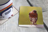 Picture of Robin #4 - Aluminium Drinks Coaster