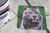 Picture of White Tiger #2- Aluminium Drinks Coaster